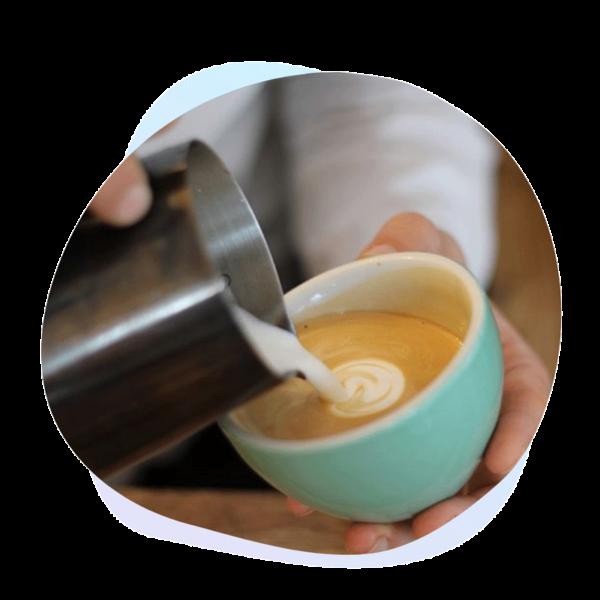 speciality-coffee-web